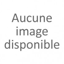 Echafaudage Roulant Acier 2m de long